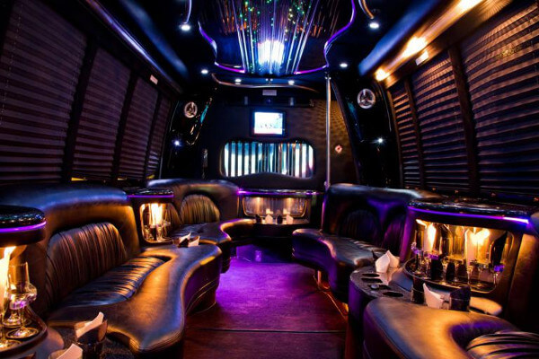 15 Person Party Bus Rental Santa Ana